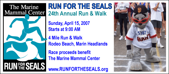 Run for the Seals - 4 Mile Race - Marin Headlands, San Francisco - April 15, 2007